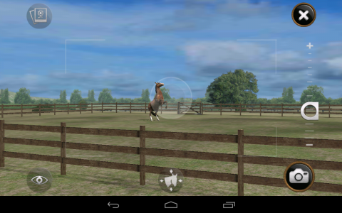 My Horse appareil photo